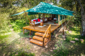 Losokwan Luxury Tented Camp - Maasai Mara