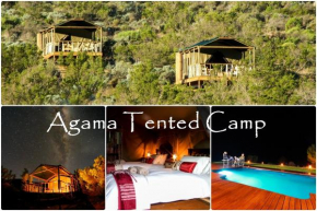 Agama Tented Camp